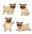 set cartoon pug dog collection vector image vector image