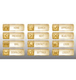 elegant golden web buttons icons set vector image