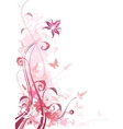 Floral Pink vector image