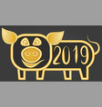 happy cheerful golden pig 2019 on an earthen gray vector image