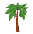 palm tree colored sketch vector image