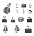 plant vegetable monochrome icons in set vector image vector image