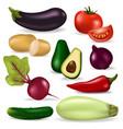 realistic 3d vegetables vegan nature organic food vector image