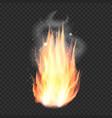 transparent realistic fire flame bonfire vector image vector image
