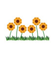 white background with sown of abstract sunflowers vector image vector image