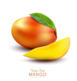 ripe mango fruit with slices on a white background vector image