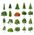 Set of trees isolated on white background vector