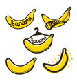 bananas label logo vector image