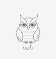 cute cartoon owl lovely owlet in doodle style vector image