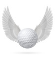 Flying ball vector image vector image