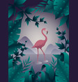 pink flamingo on the water vector image vector image
