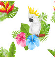 seamless exotic pattern with parrot cockatoo and vector image vector image