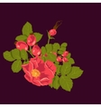 Floral background with wild rose vector image