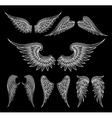 White wings on black background vector image