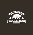 bear logo template in outdoor vintage style bear vector image