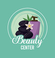 colorful logo of beauty center with volcanic vector image vector image