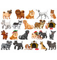 different funny dogs in cartoon style isolated on vector image