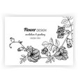 greeting card with butterfly pea flower and leaf vector image vector image