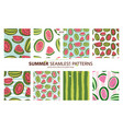 set watermelon patterns 8 patterns summer vector image