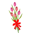 a lovely fresh tulip bouquet with red ribbon vector image vector image
