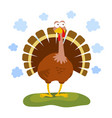 Cartoon funny turkey