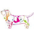 colorful decorative standing portrait of basset vector image vector image