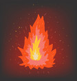 fire on a dark background vector image