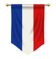 france pennant vector image vector image