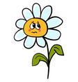 sad daisy on white background vector image vector image