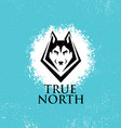 true north active lifestyle outdoor club husky vector image