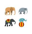 elephant icon set flat style vector image vector image