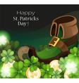 Leprechaun shoe vector image vector image
