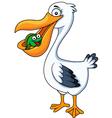 Pelican cartoon eating fish vector image vector image