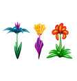 set of fantastic flowers vector image vector image