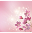 Shining pink flowers background vector image