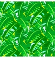Tropical vintage pattern with big banana leafs vector image vector image