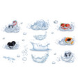 water splashes and frozen fruits and berries set vector image vector image