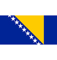 Bosnia and Herzegovina flag vector image vector image
