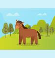 Brown wild animal horse near green trees