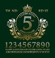 celebrating anniversary sign kit golden elements vector image
