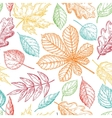 Seamless pattern with colorful autumn vector image vector image