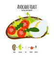 avocado hummus toasts vector image vector image