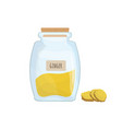 ground ginger stored in clear jar isolated on vector image vector image