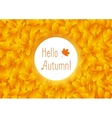 Orange autumn leaves background vector image vector image