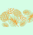 pineapple tropic summer pattern line arts exotic vector image vector image