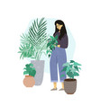 young woman takes care about home plants vector image