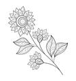 Beautiful Monochrome Contour Flower vector image
