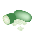 Fresh Wax Gourd on A White Background vector image