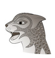 head of a wild cat zen tangle feline face vector image