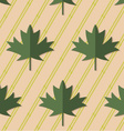 Retro fold deep green maple leaves on diagonal vector image vector image